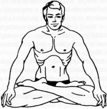 An artist rendering of one of the possible actions of uddiyana bandha.