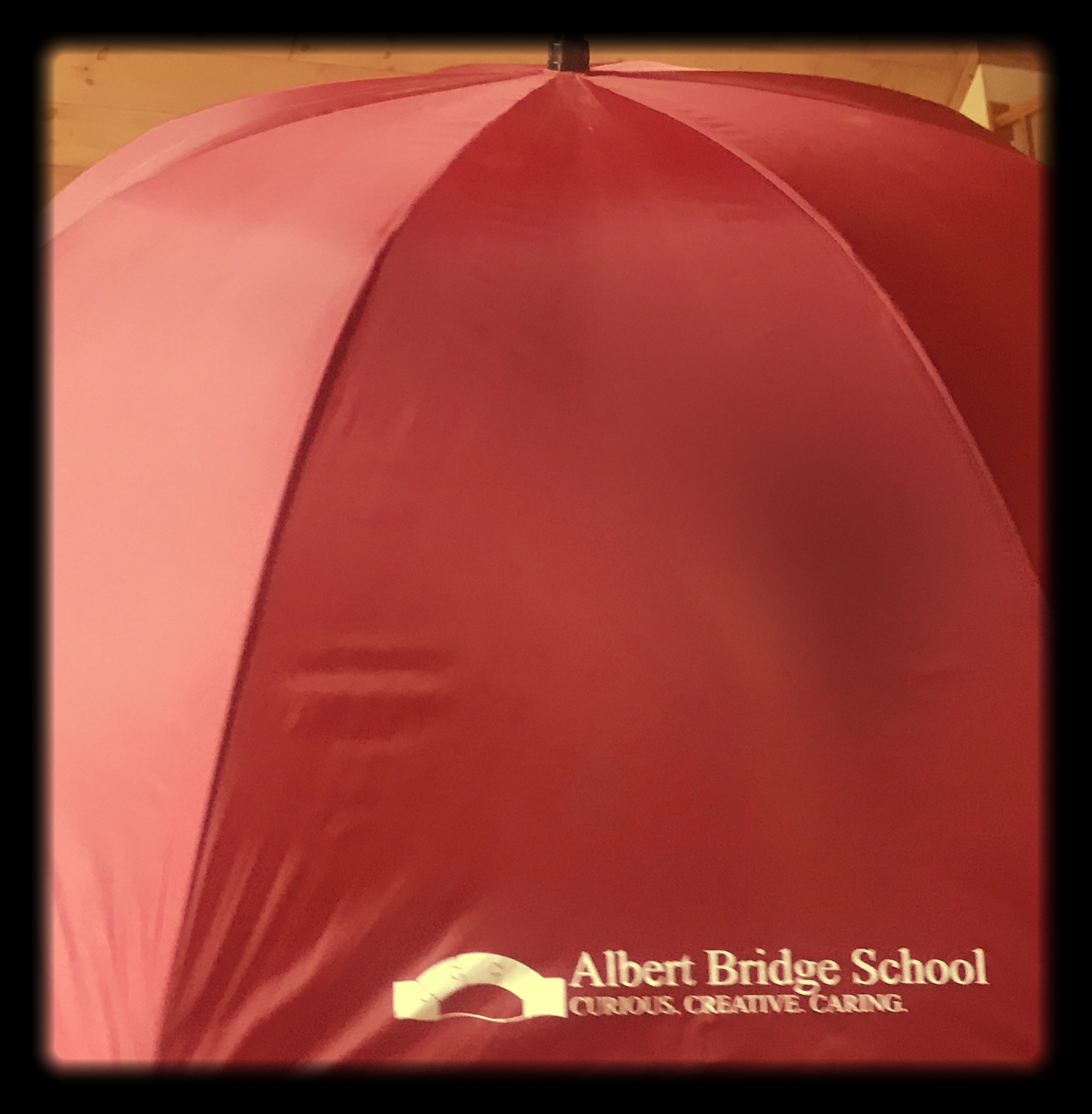 """Under the umbrella of Ascutney Winds,  SCIP , and  Albert Bridge School , Brownsville welcomes the return of the  Umbrella Concert Series . In 2018, two concerts are on offer for  Brownsville : the  New England Brass Band  on July 3rd, and  Amherst Jazz Orchestra  on August 18th.  These concerts are part of a continuing series put on by Ascutney Winds, a non-profit that brings professional musicians to the communities surrounding  Mt. Ascutney . Later in the summer, on August 18th, return to Brownsville for a """"Kick Off Your Shoes and Dance"""" concert, featuring the big band sounds of the  Amherst Jazz Orchestra , which played in Brownsville last year to great result. This year, the ensemble returns to Brownsville with a dance set; a special dance floor will be part of the setup for anyone who finds his or her body already swaying to the sounds. Pack a picnic and blanket or chair, bring your family, and kick off your shoes and dance! Concert begins at 4:30.  Umbrellas are for sale at all concerts! Big, beautiful, and all-encompassing, they yours for a $35 tax-free donation to Ascutney Winds. Concerts are free of admission charge; donations to keep the series running are gratefully accepted."""