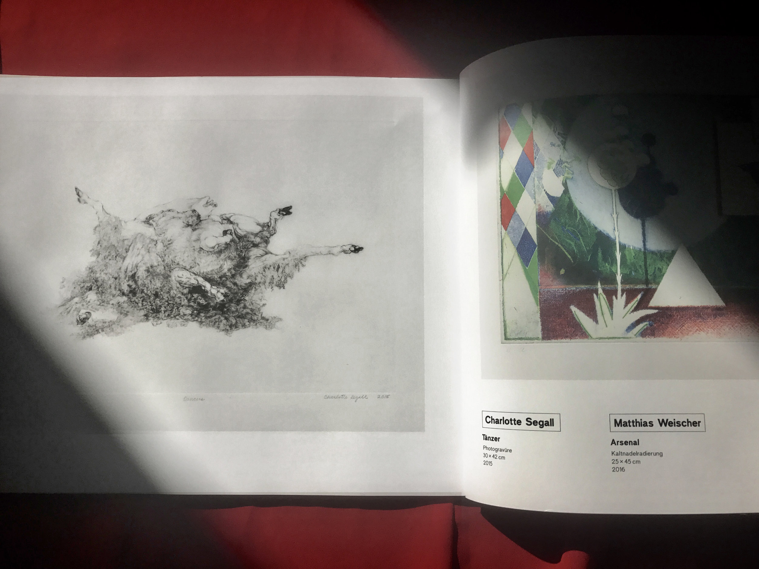 Museum-Catalog-Charlotte-Segall.jpg