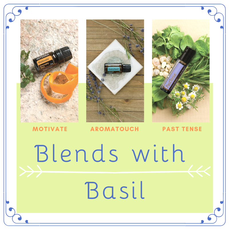 doTerra blends with basil in the bunch