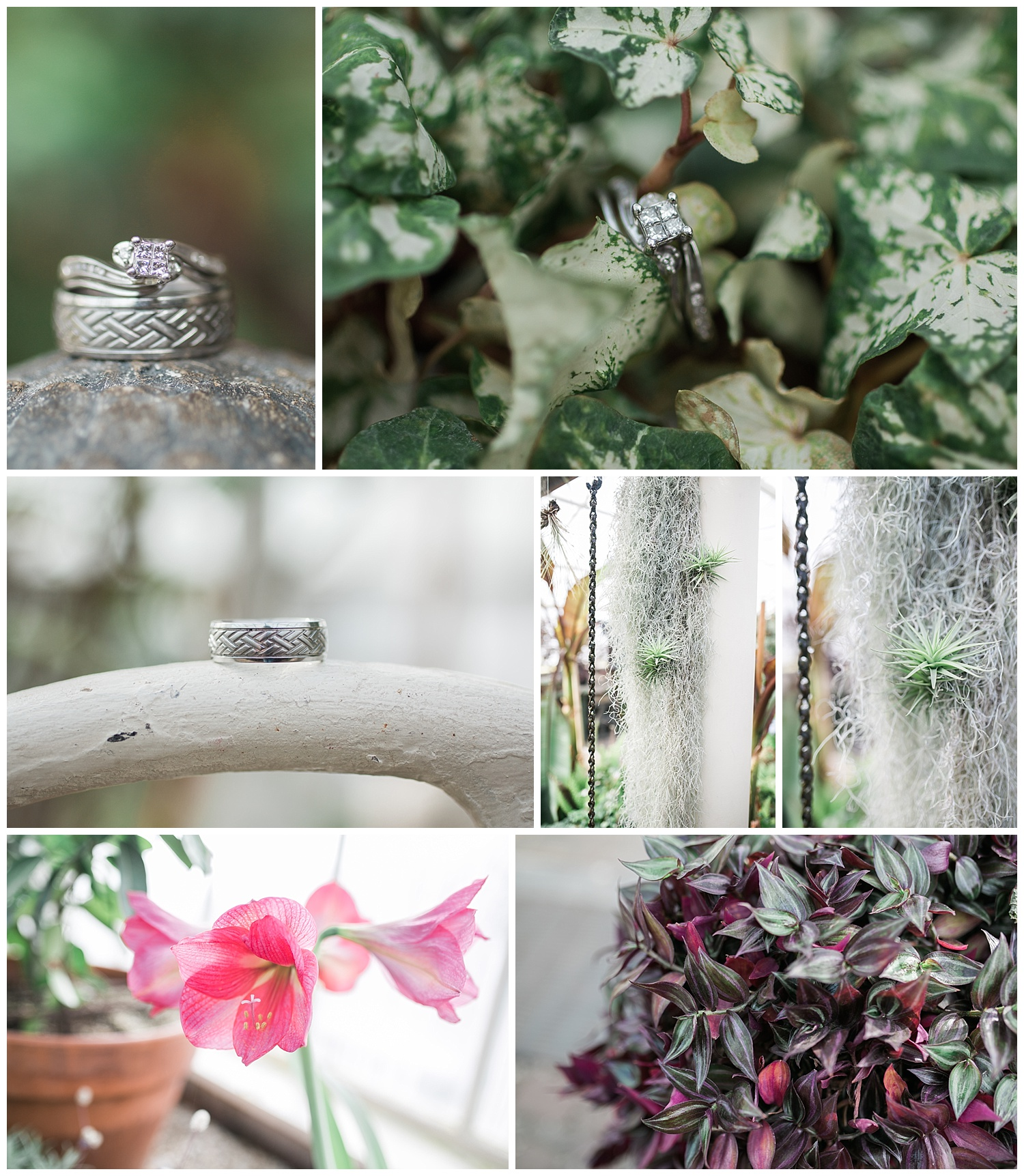 Buffalo Botanical gardens wedding - Buffalo NY Lass and Beau 106.jpg