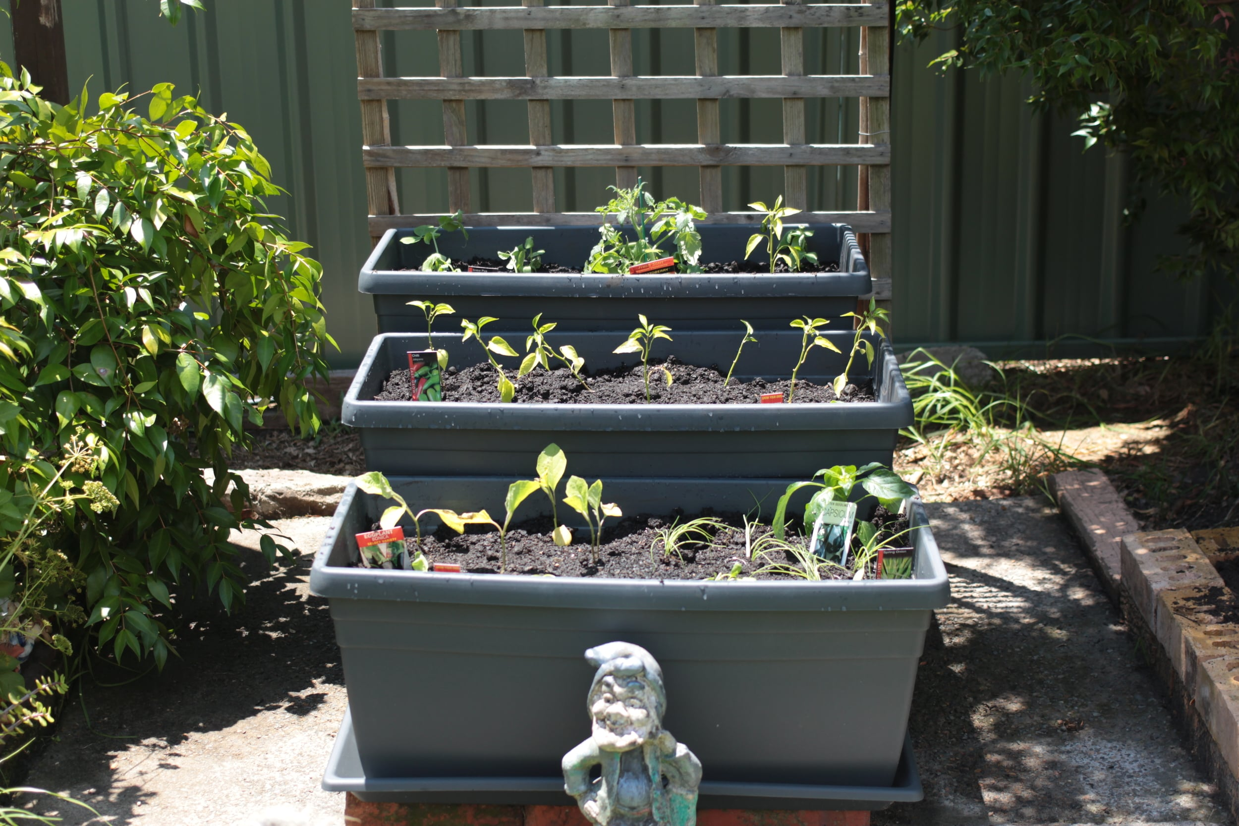 Aforementioned Garden