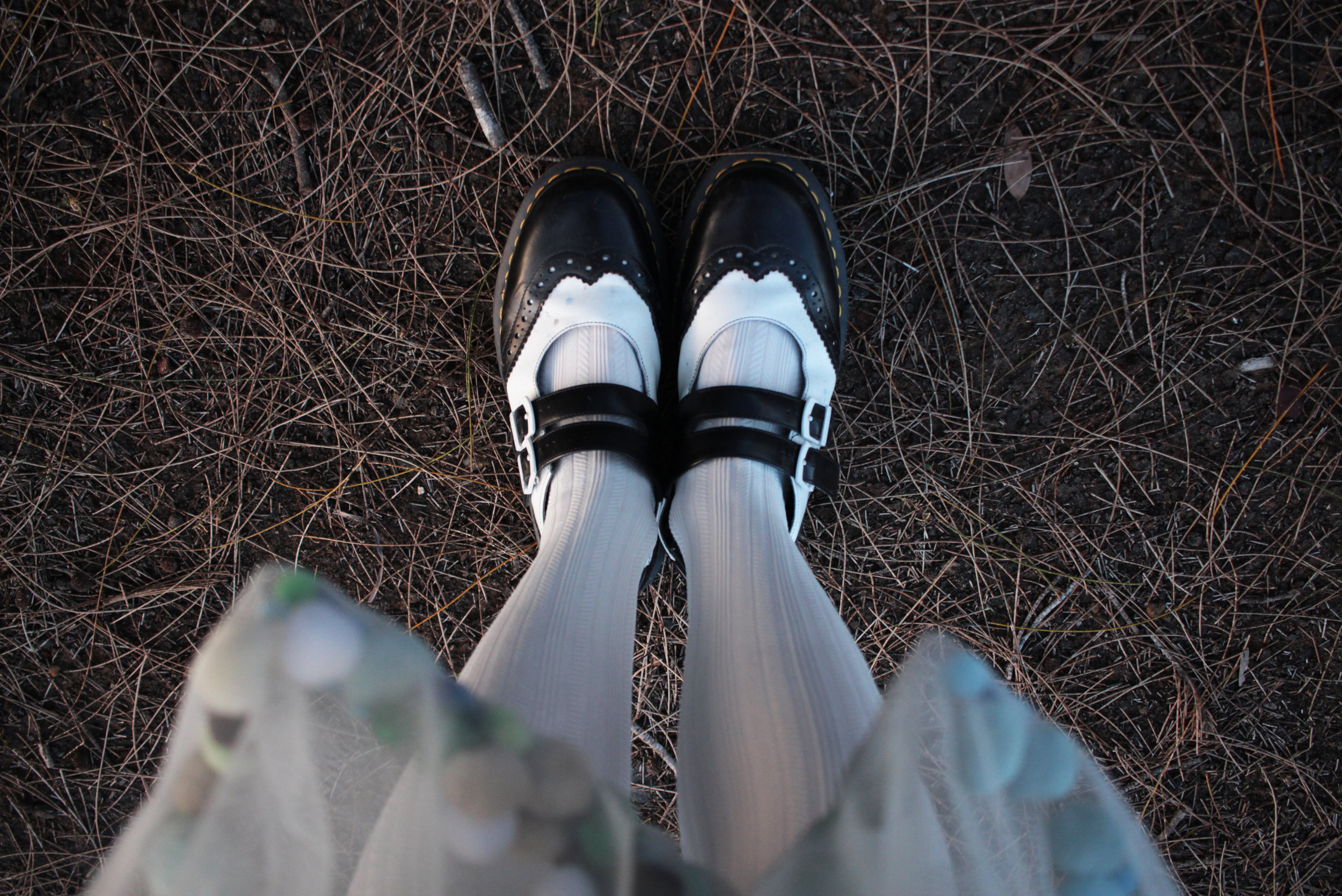 Sshoes.jpg