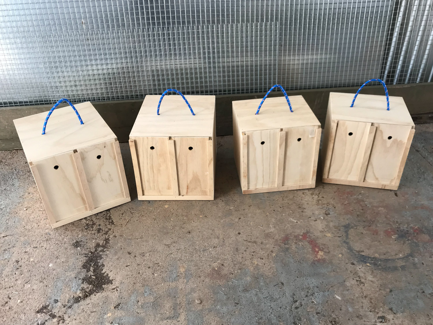Carry Boxes and Brooders — Royal Bird