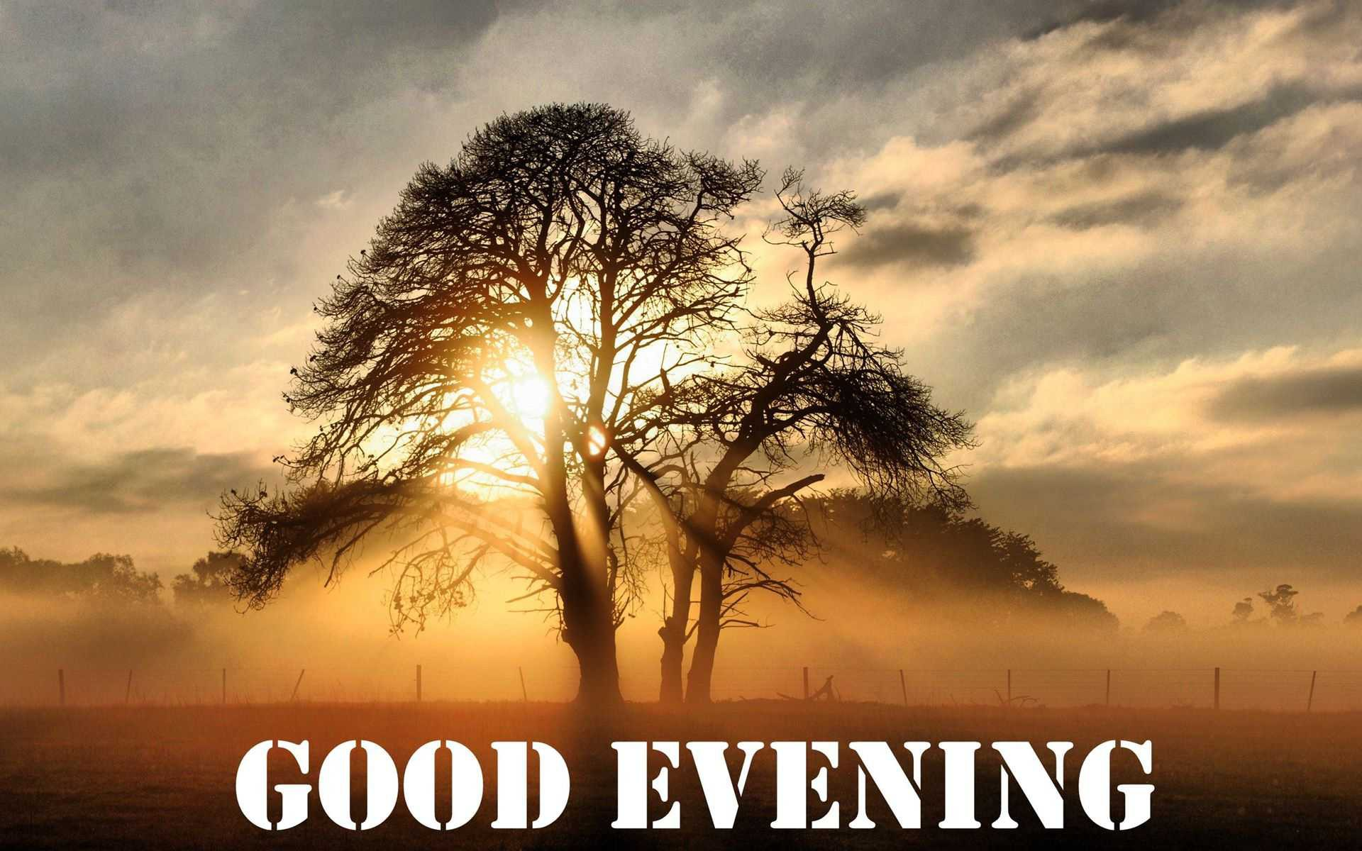 Good Evening 2.jpg