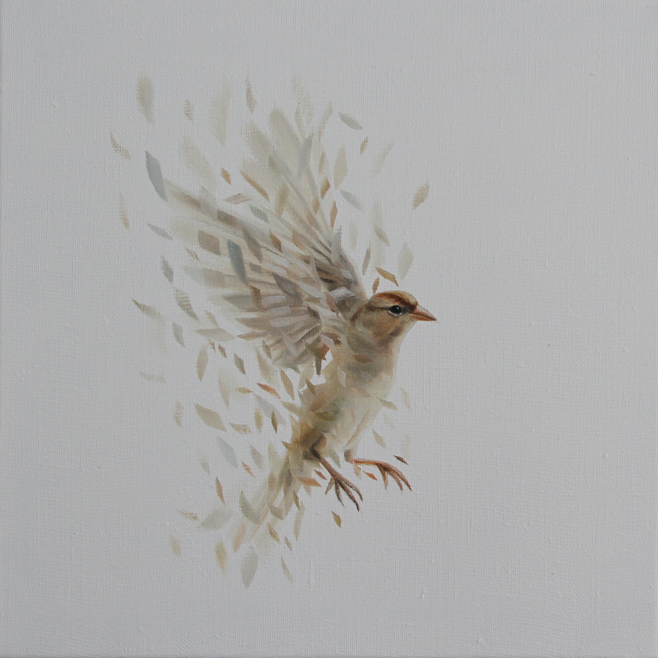 Bird Study 37