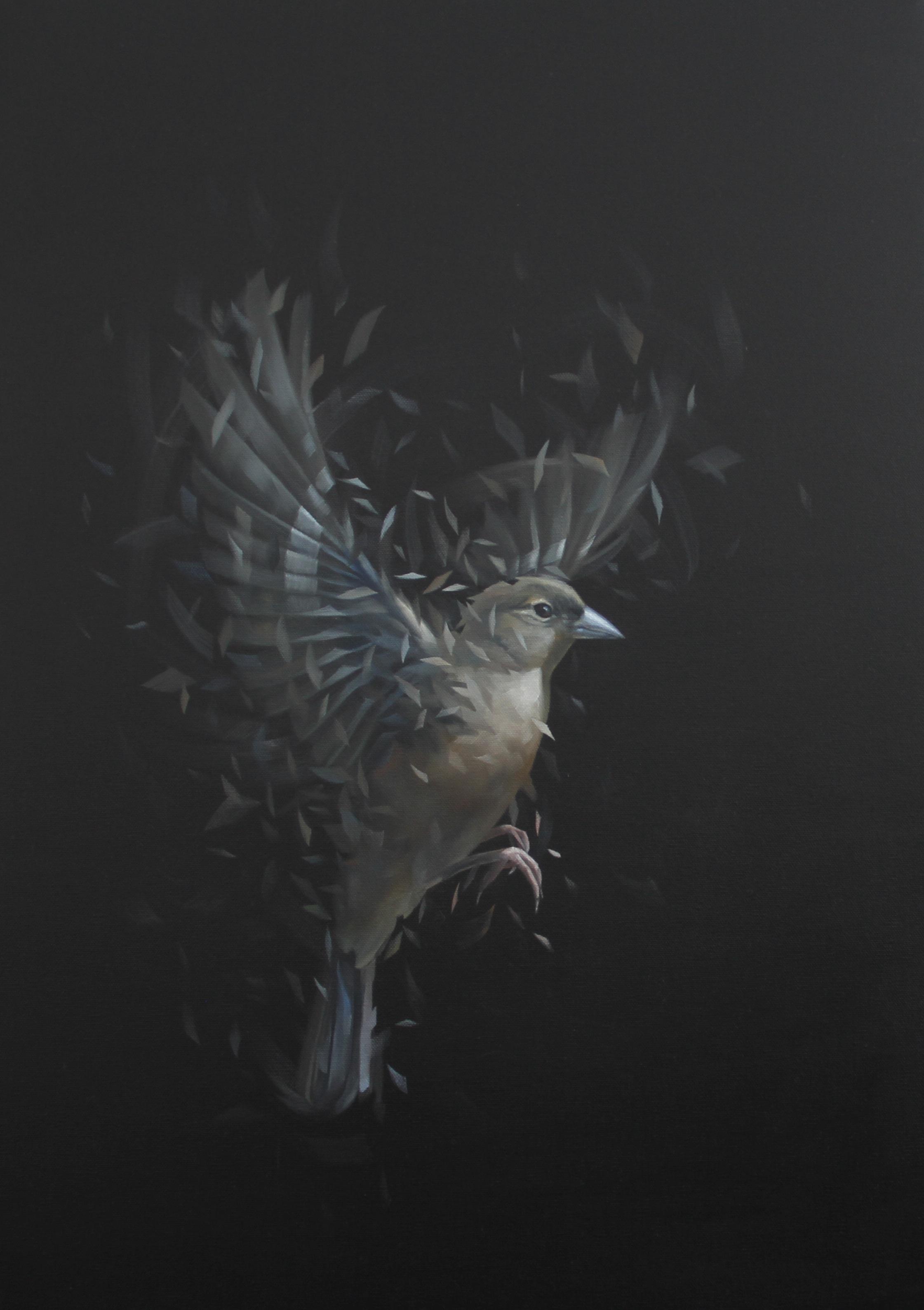 Bird Study 51