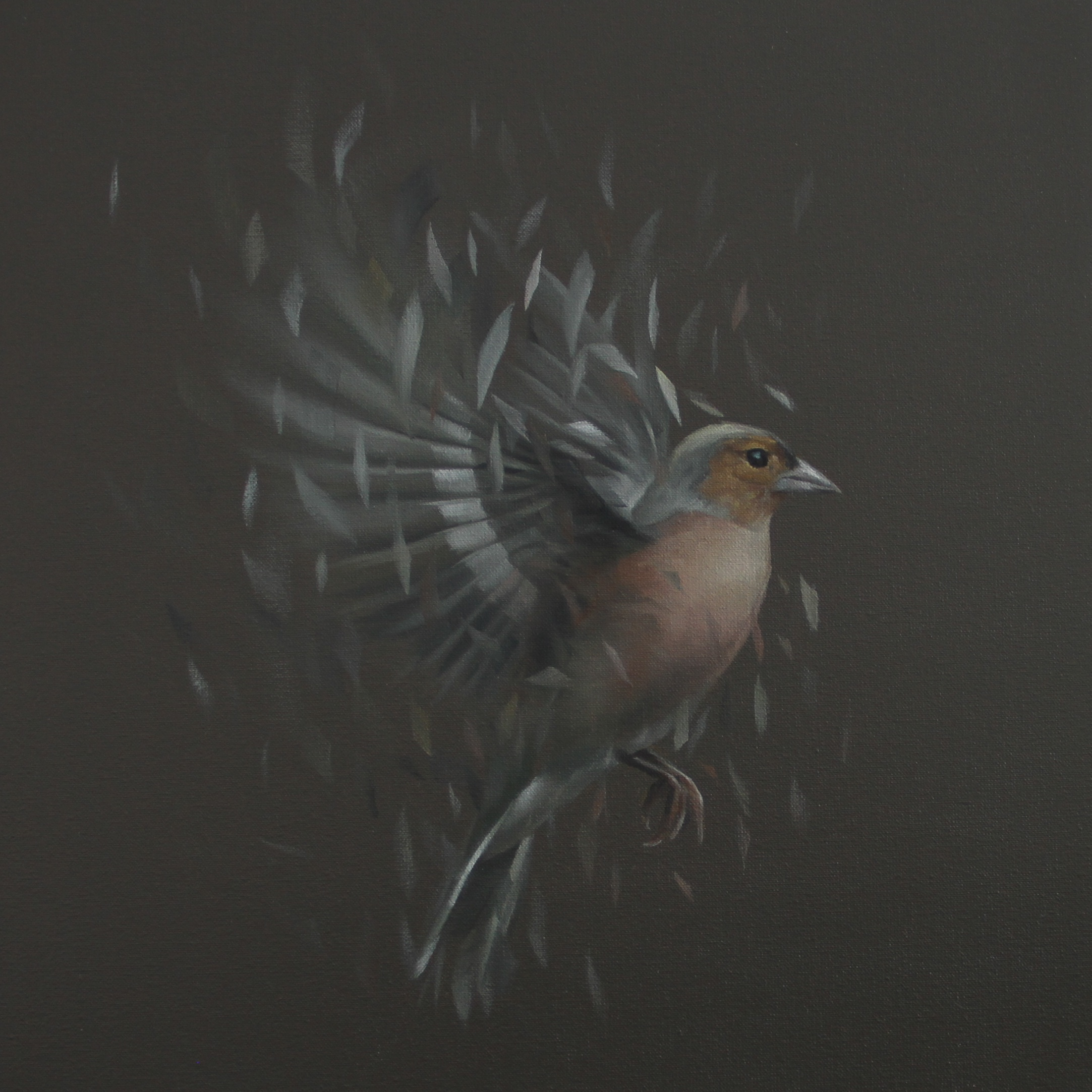 Bird Study No. 55