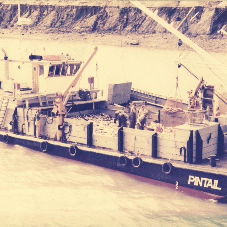 1993 - Kenai River