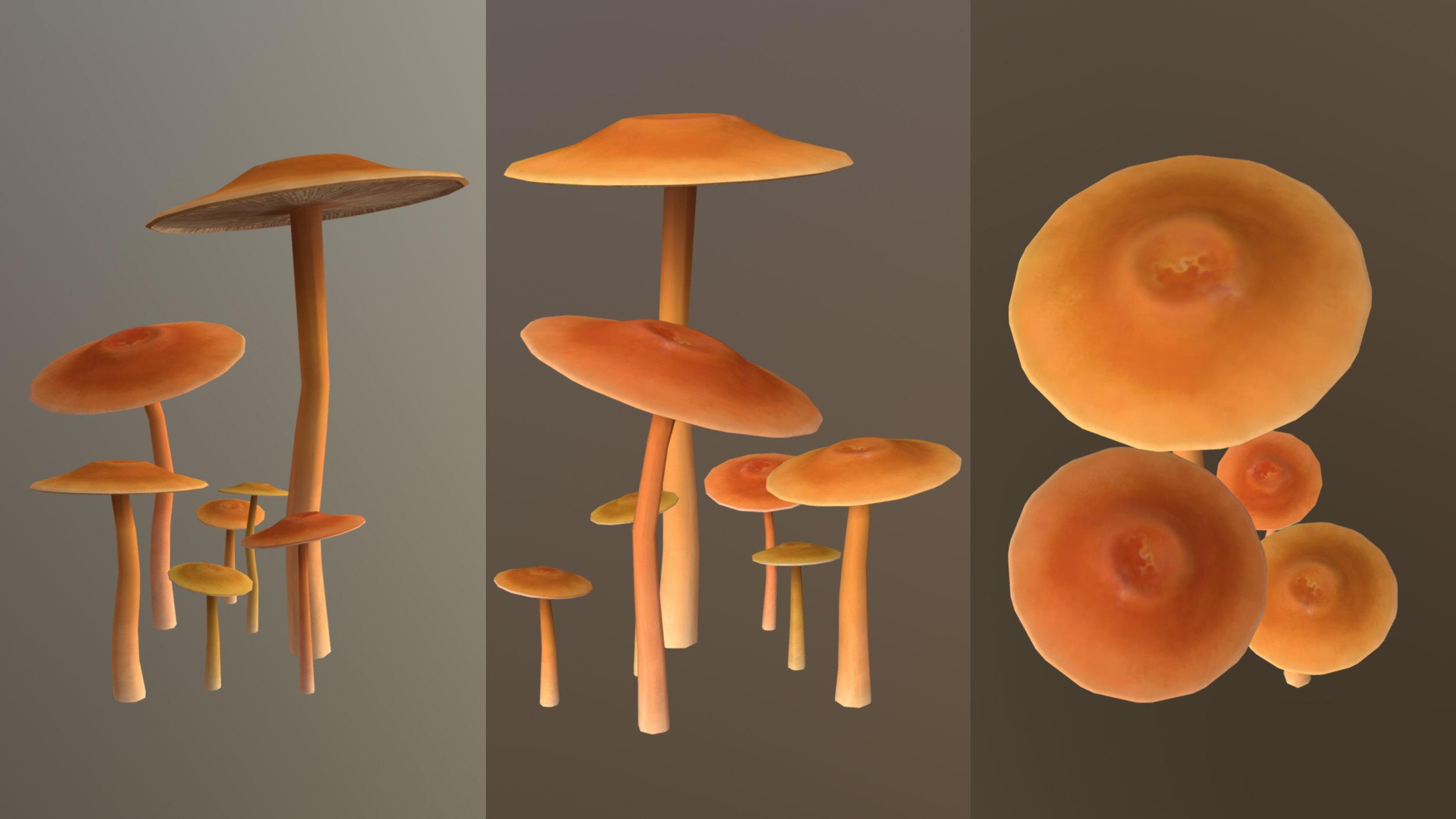 Qspence_Mushrooms.jpg