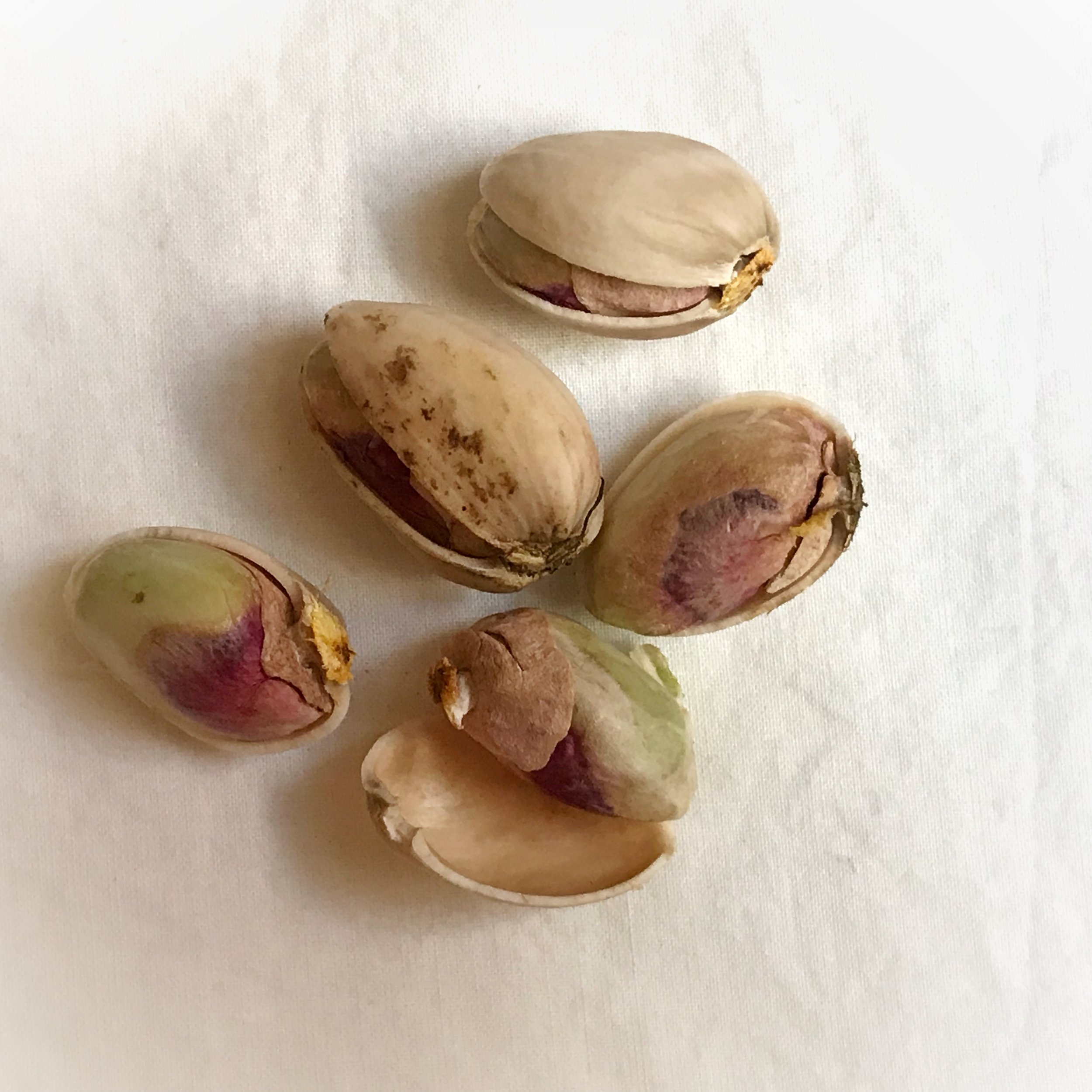 Fresh pistachios in and out of their shells. The top one is  khandan  – smiling.
