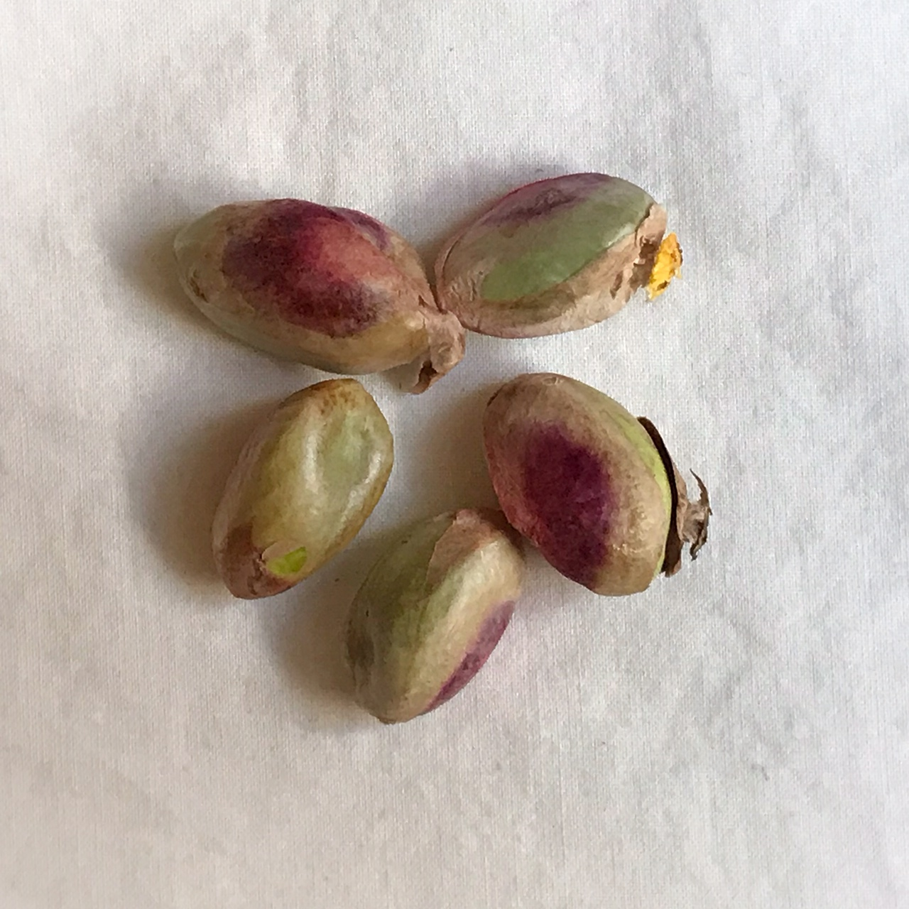 Fresh pistachios out of their shell. The (edible) papery husk is deep red-to-brown-to-green, and the inside is green.