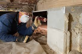 get a local structural pest control  branch 3   licensed  company to inspect
