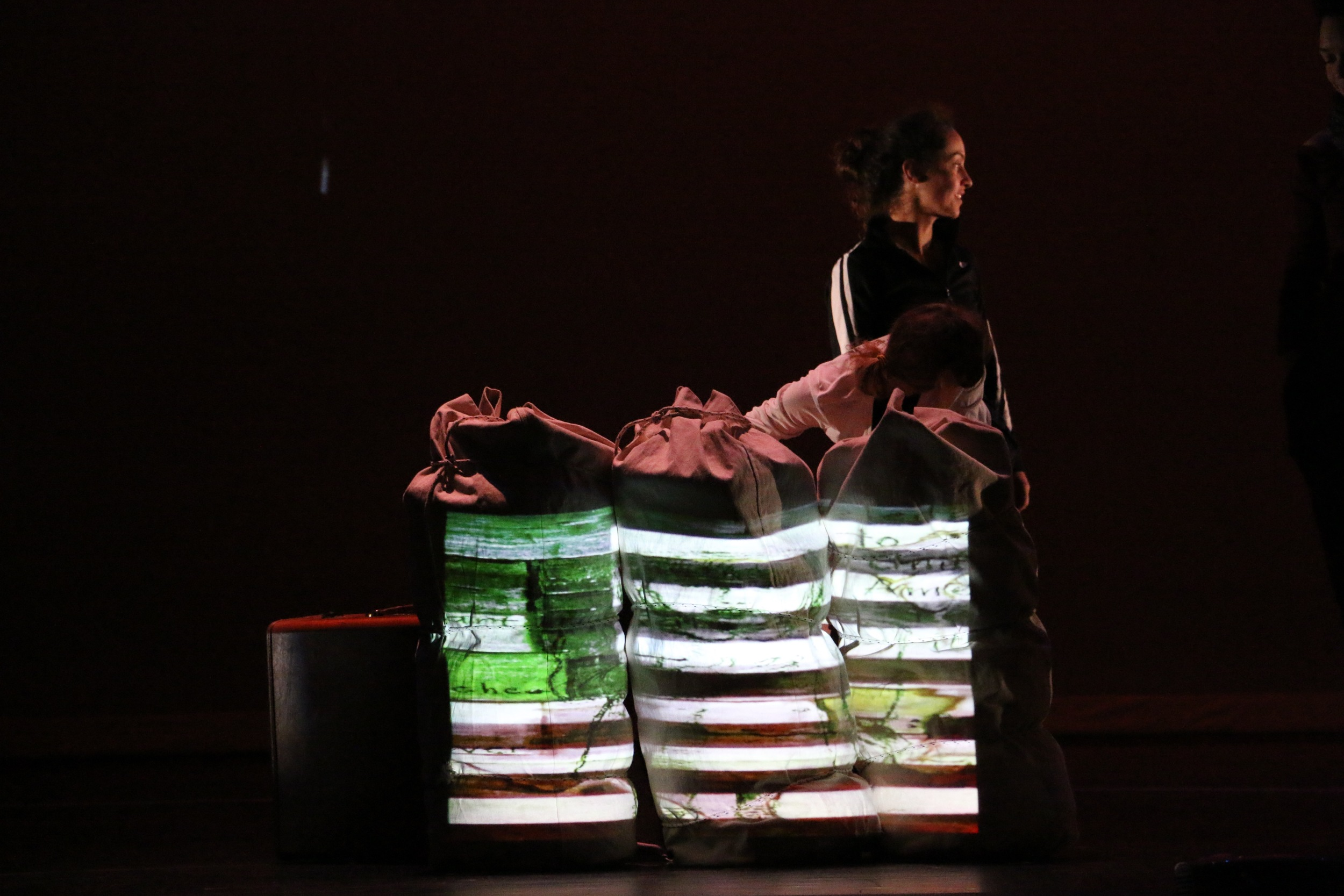 Gaman Performance by CORE Performance Company. Photo by Christian Meyer.