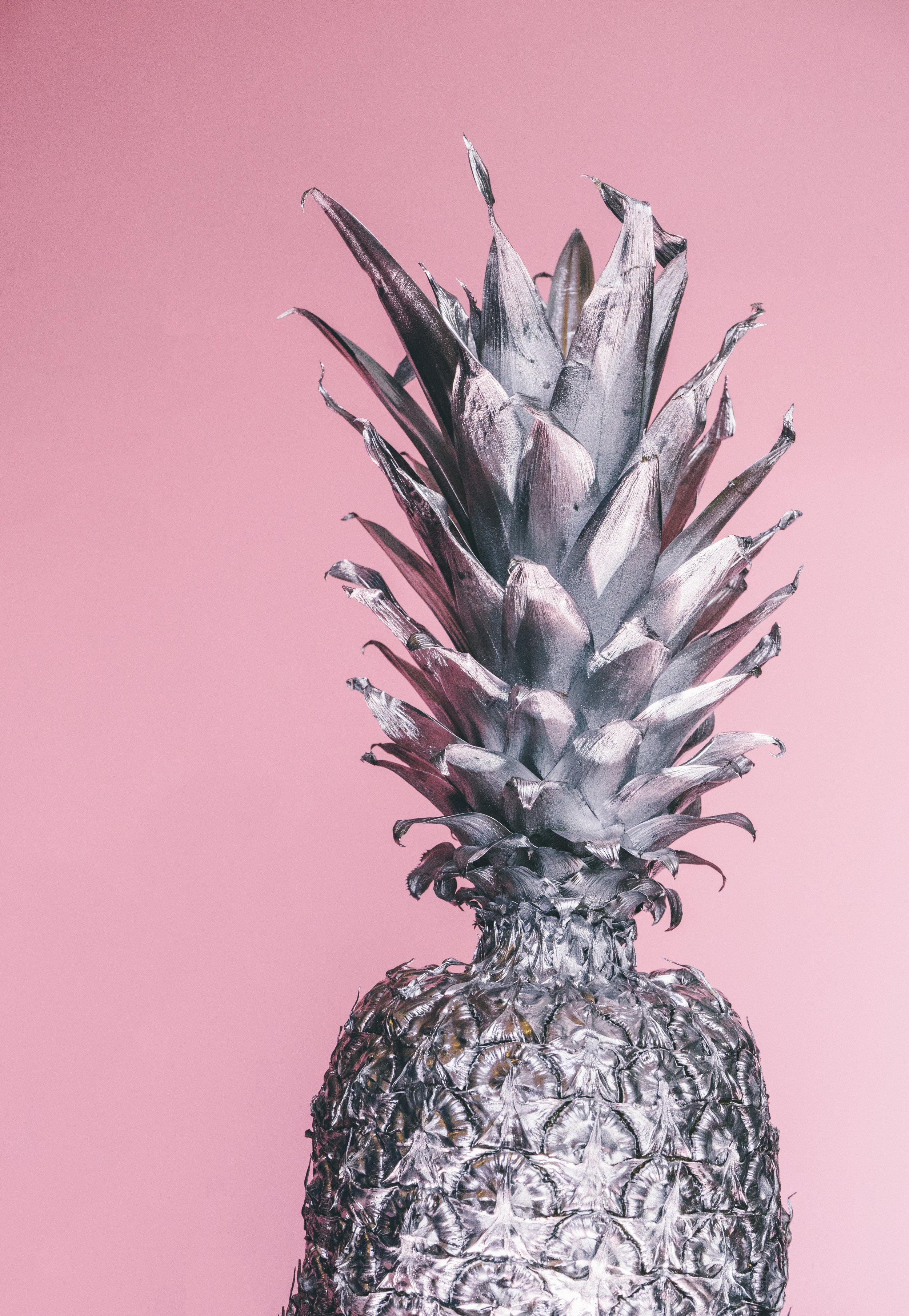 pineapple-supply-co-86279-unsplash.jpg