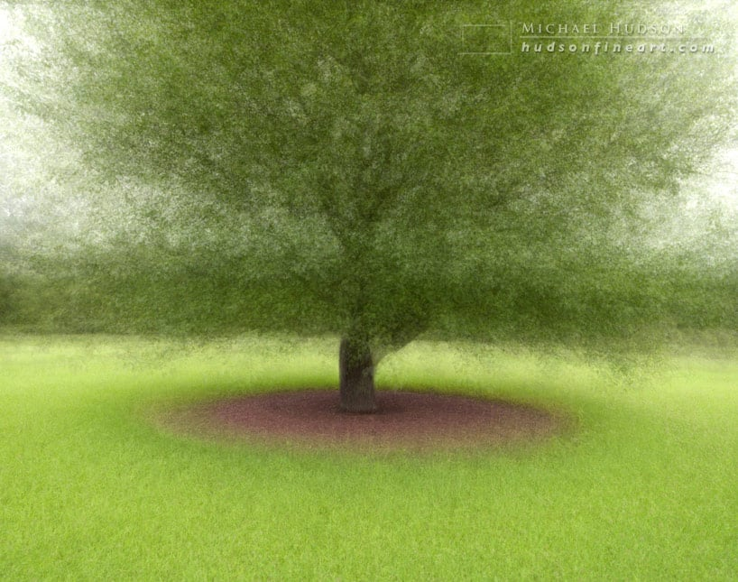 arby-tree-jul2015-5.jpg