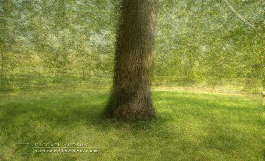 arby-tree-sept2015-3.jpg