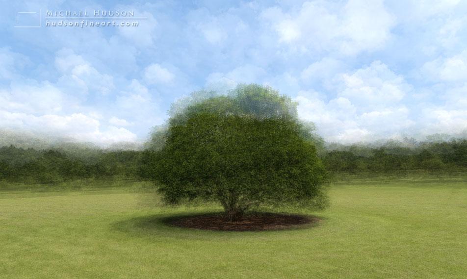 arby-tree-jul2015-13.jpg