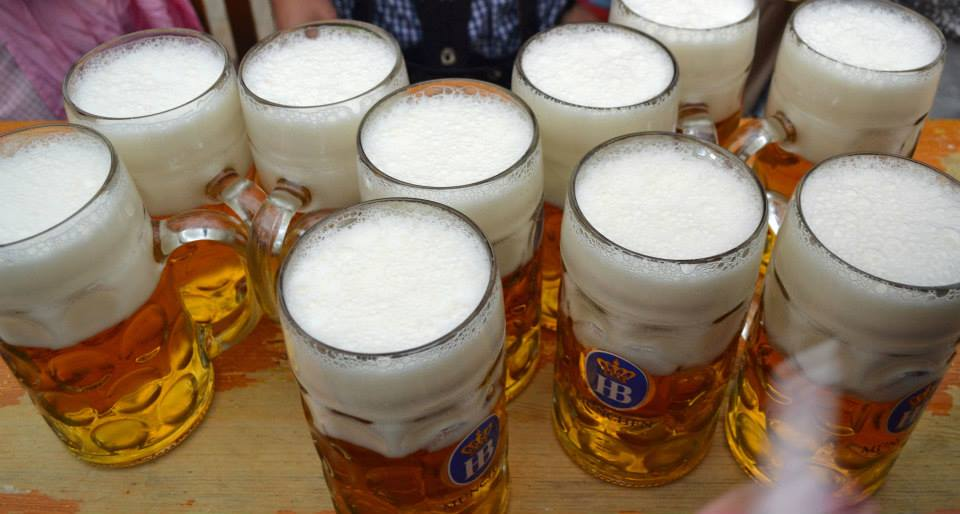 hofbrauhaus beer