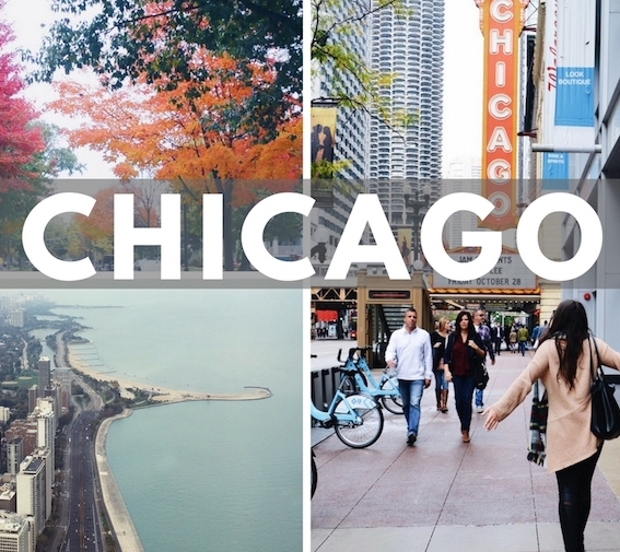 See what it's like to visit Downtown Chicago and the suburbs! Chicago travel vlog :)