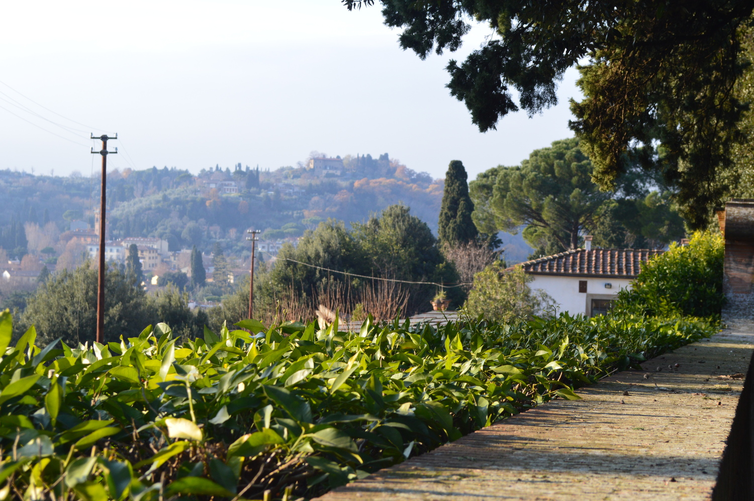 4 Amazing Day Trips from Florence, Italy - Tuscany is so beautiful it will blow your mind. You could easily spend a week in Florence itself, though if you'd like to see more of the area I highly recommend these day trips.