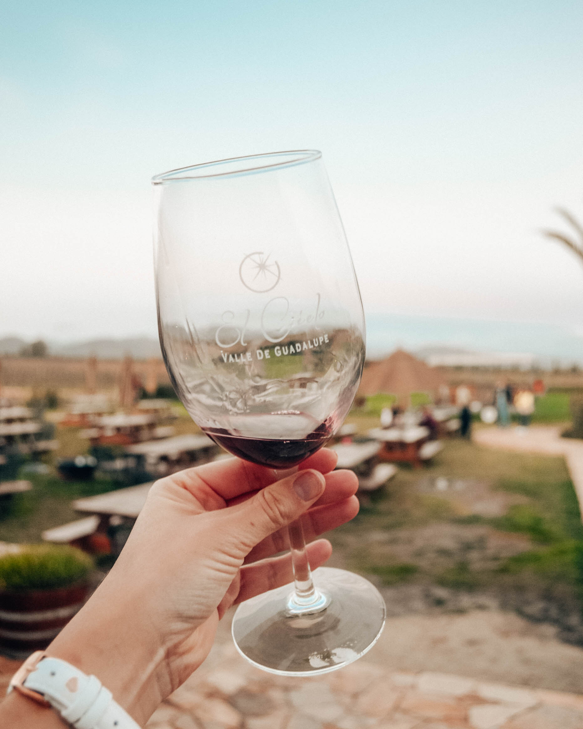 Mexico's Baja California is home to beautiful coastline AND wine! This post recaps wine Tasting in Mexico's Guadalupe Valley - two wineries we visited, plus a Frida Kahlo-inspired restaurant!