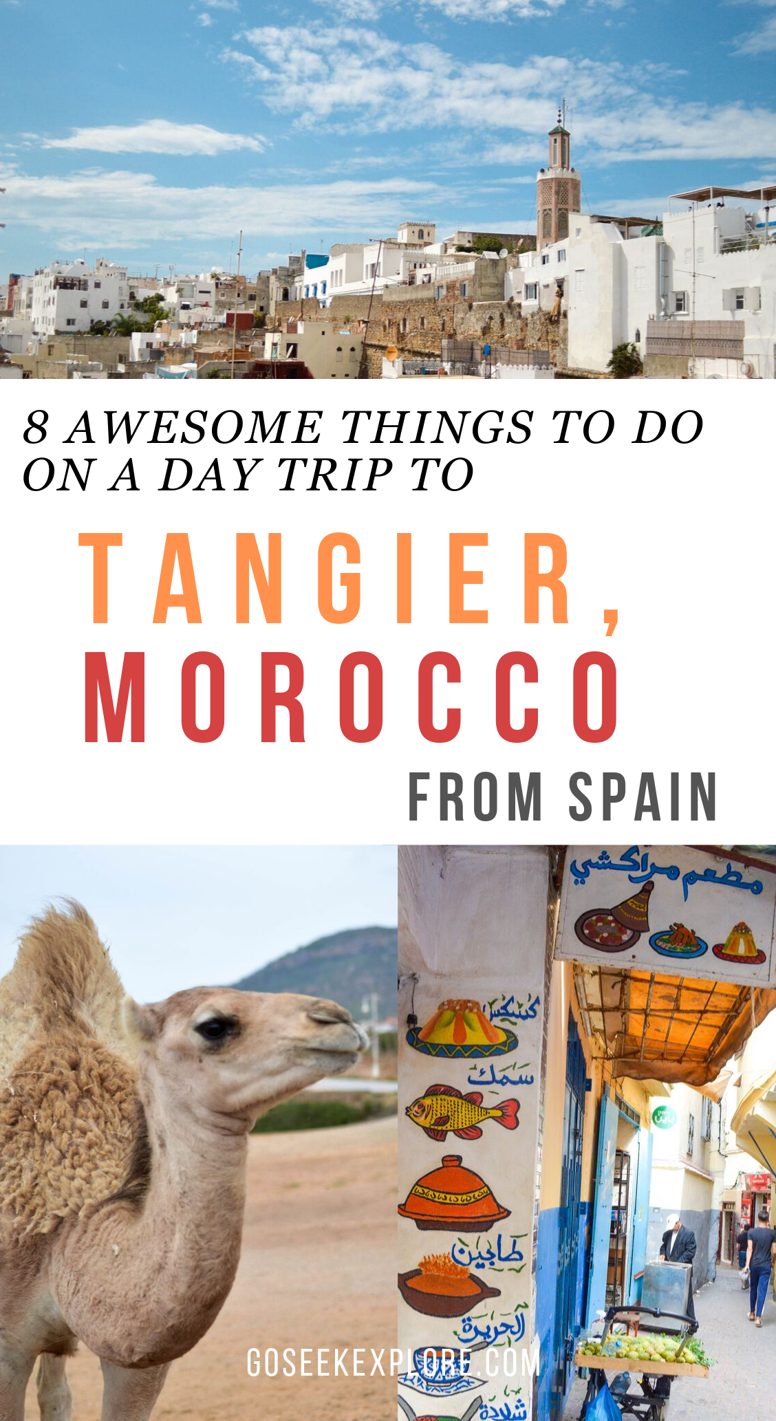 Awesome things you have to do on a day trip to Tangier, Morocco! Traveling from Spain to Tangier is totally worth it, and this guide will help you plan your trip so you can make the most of your limited time! goseekexplore.com #morocco #tangier #moroccodaytrip #spaintravel #spain #seville