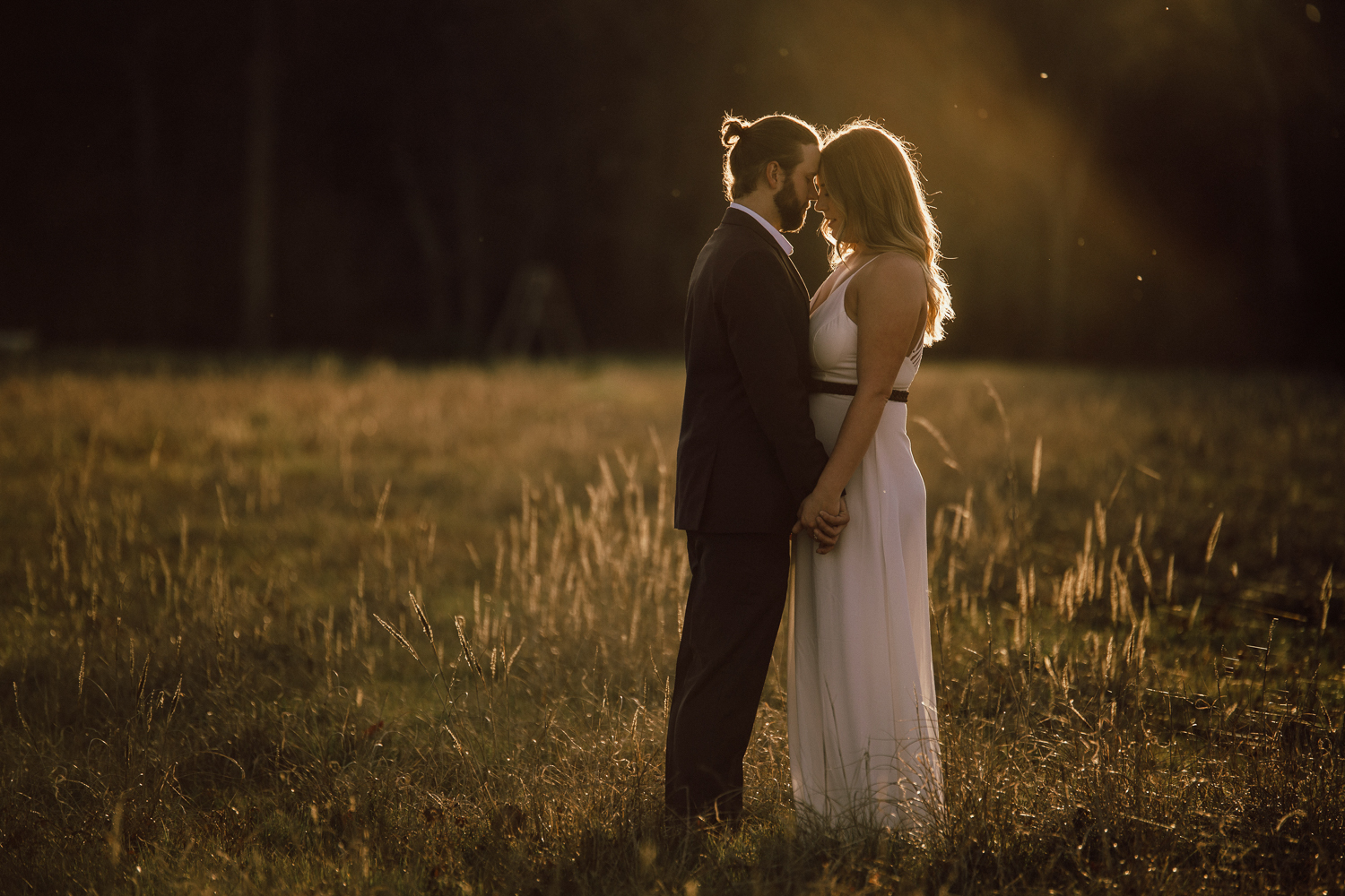 Wedding couple pictures at sunset in a field.