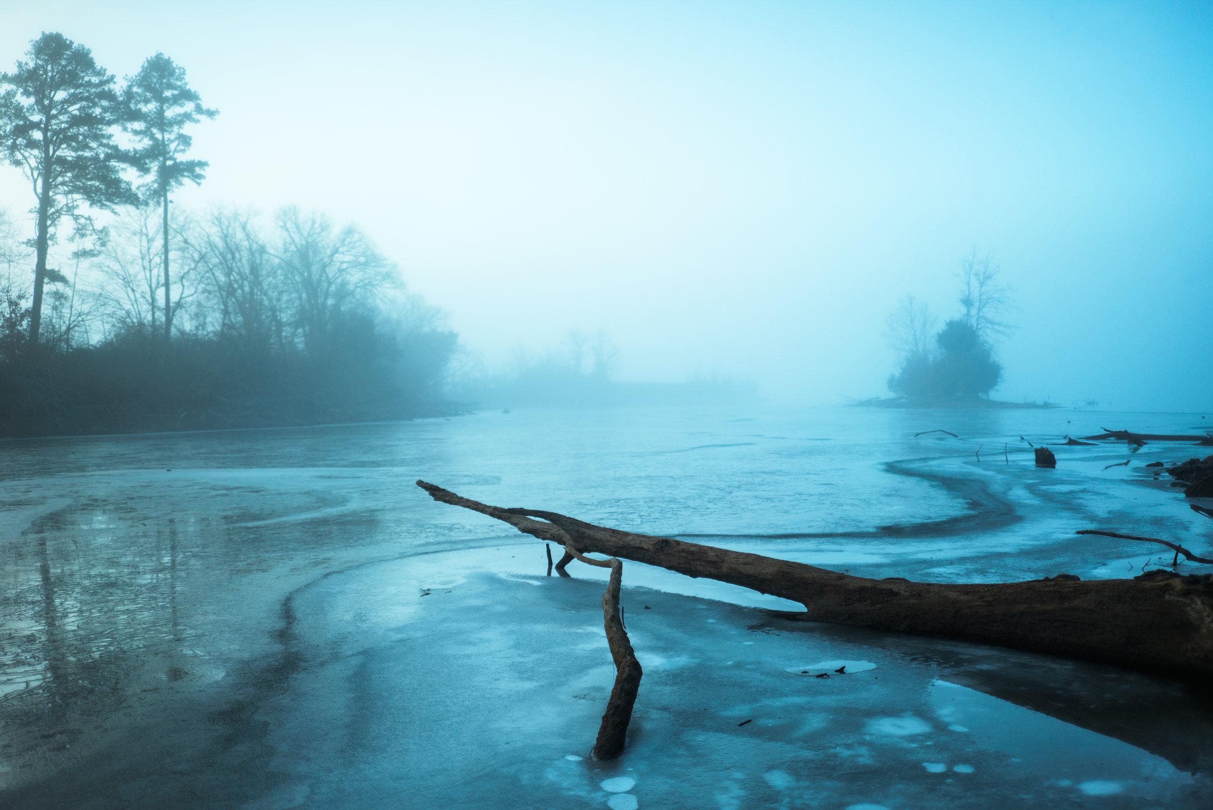 the fog-00031.jpg