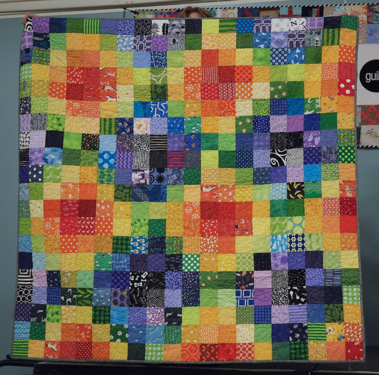 Charity Quilt by PMQG Members