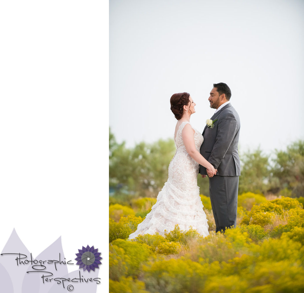 Couples Session | New Mexico Wedding | Sagebrush | Wedding Photographers in Albuquerque | Photographic Perspectives | Noah's Event Venue | Noah's of Albuquerque | New Mexico Wedding Photographers