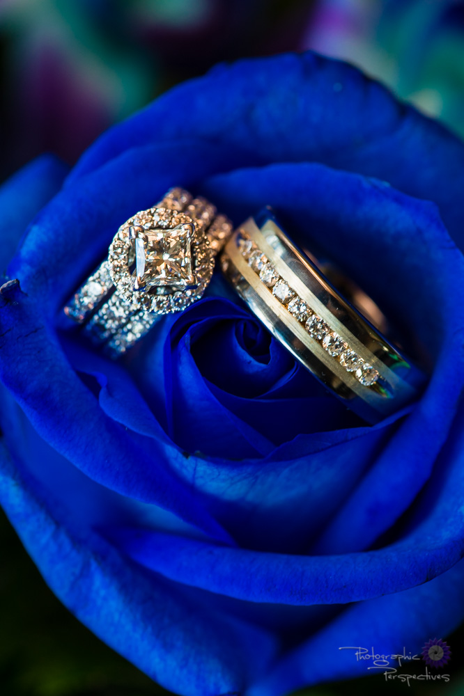 Wedding Rings | Blue Rose | Wedding Details