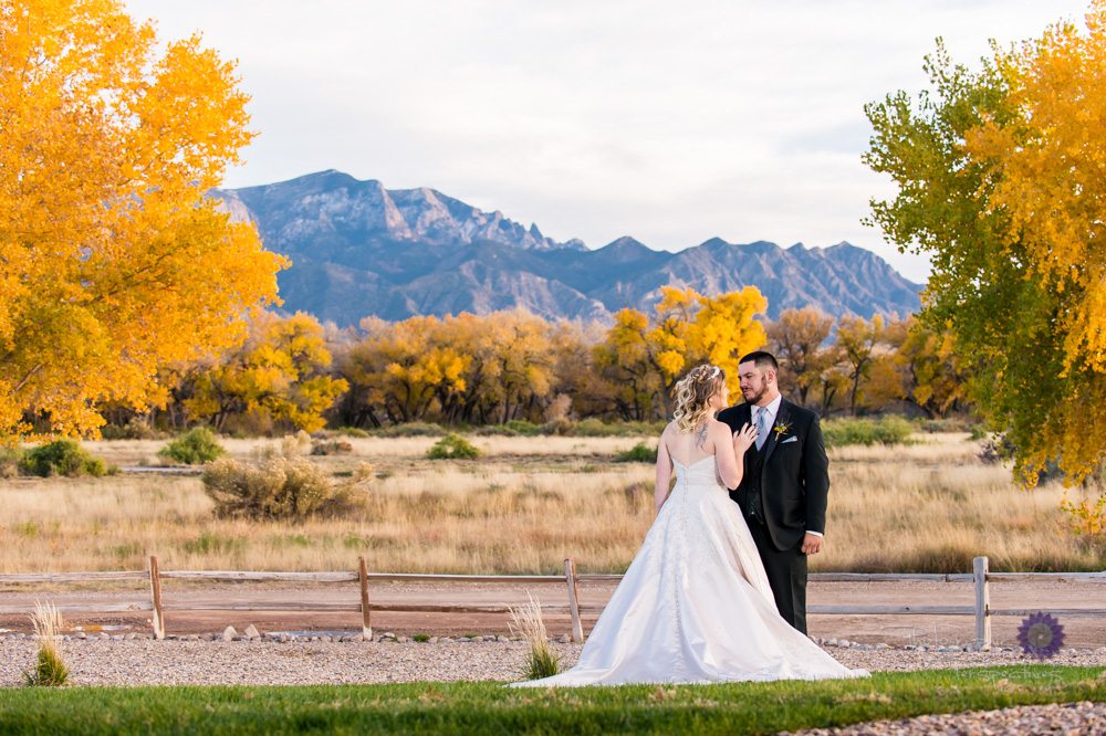 Hyatt Tamaya Wedding|Wedding Photographers|NM Wedding photographers.jpg