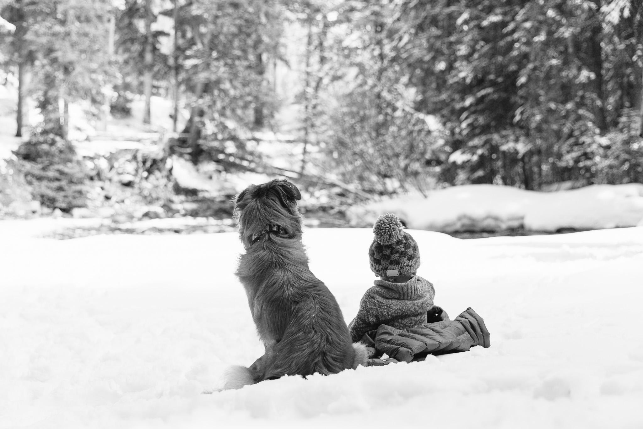 denver_baby_photographer-20.jpg