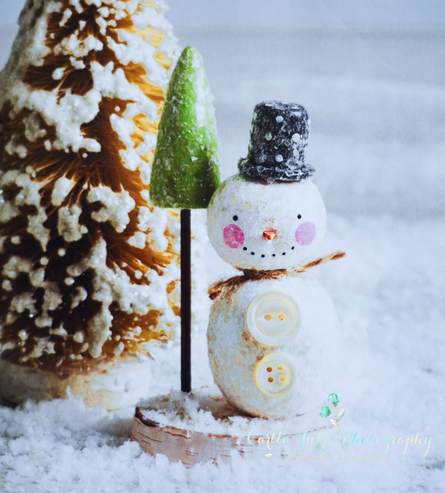Christmas Craft Ideas and Gifts in Sarasota - Carlla Juffo Photography-3.jpg