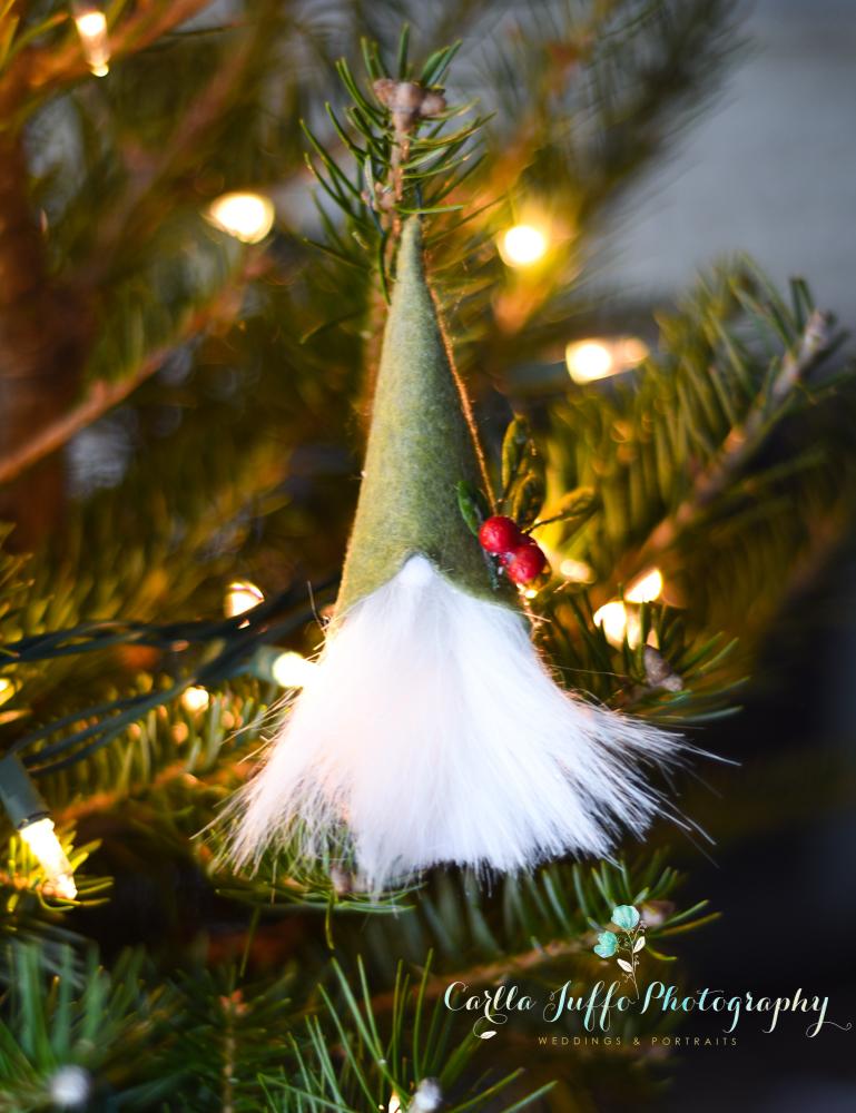 Christmas Craft Ideas and Gifts in Sarasota - Carlla Juffo Photography-17.jpg