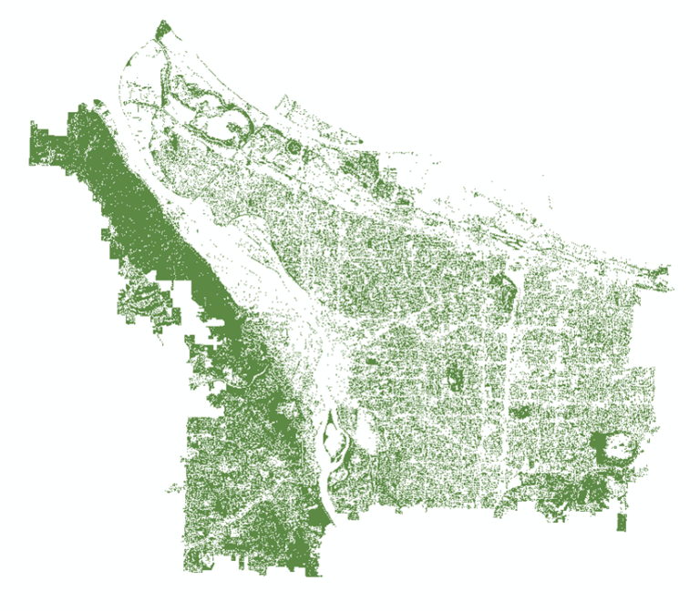 The output canopy layer from the NAIP imagery after post-classification smoothing and masking. Notice there are still a few holes in canopied areas of Forest Park – those pesky shadows!