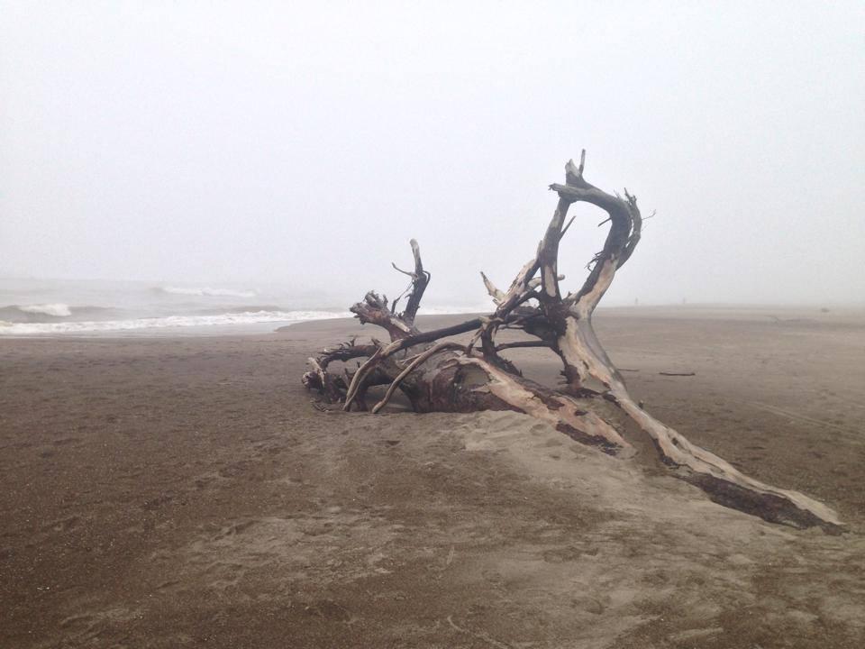 beach grey day.jpg