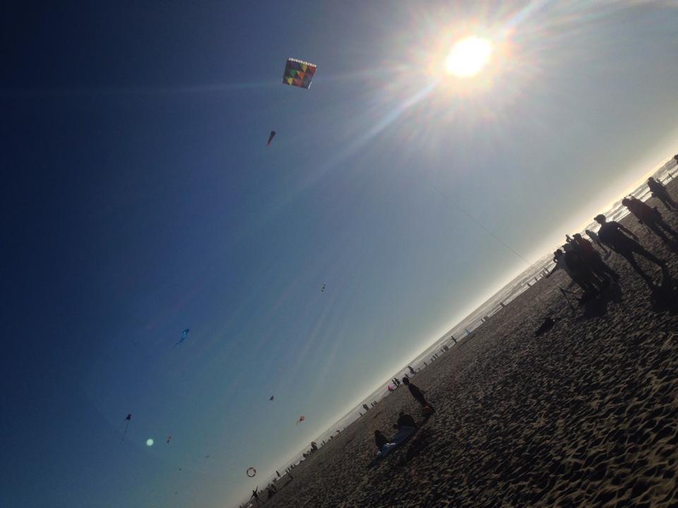 kites 2.jpg