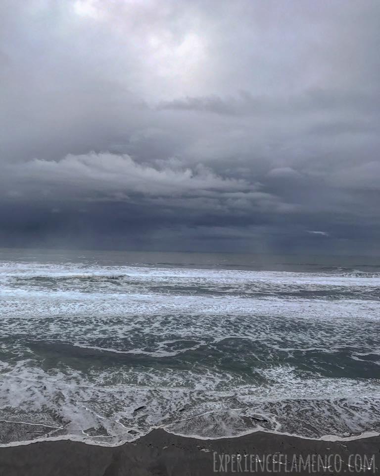 The tide is in.jpg