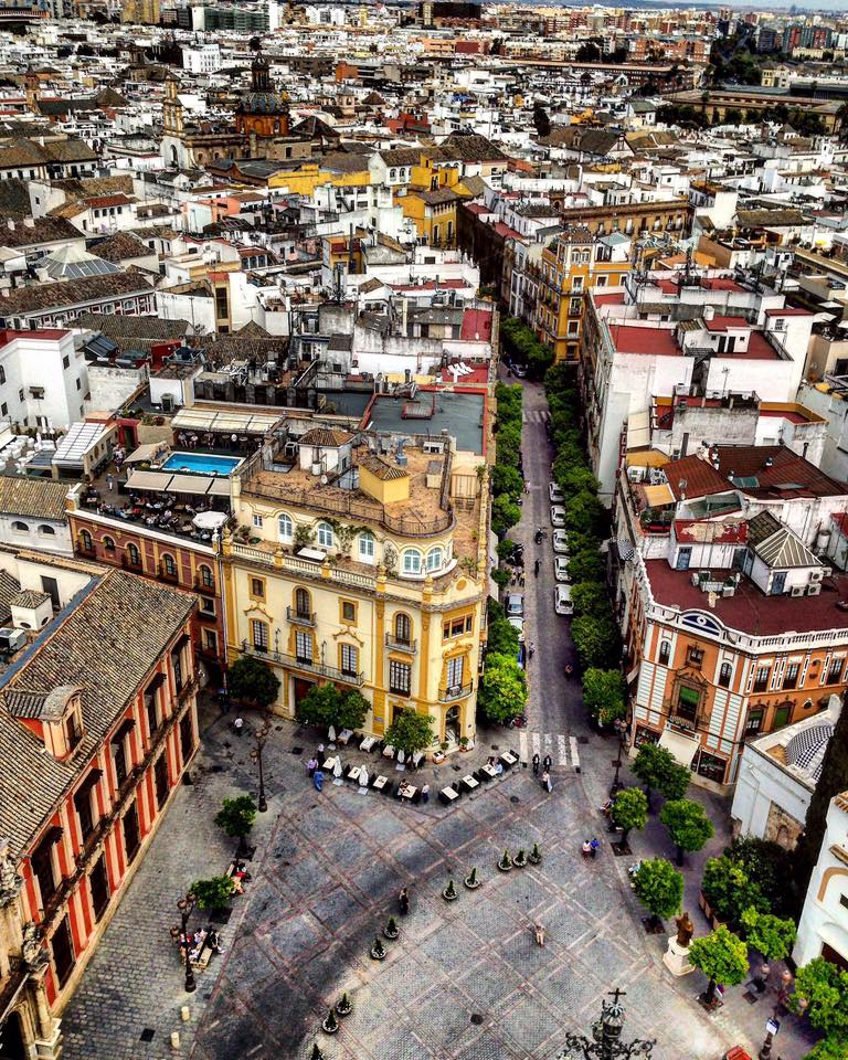 View of Sevilla from the top of the Giralda