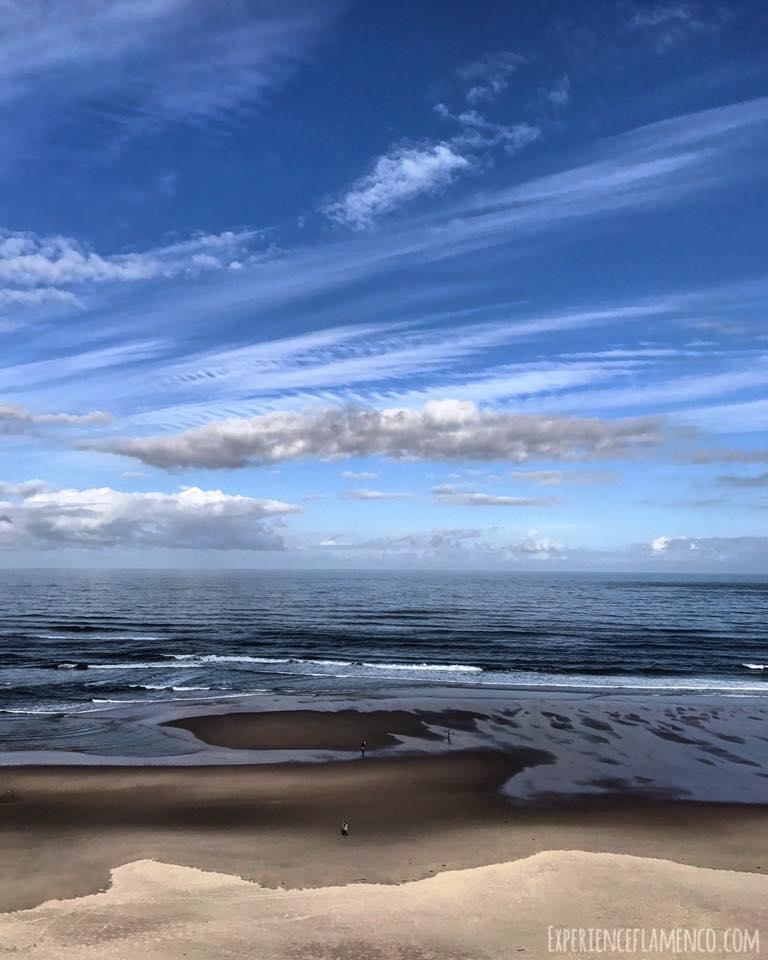 beach june.jpg