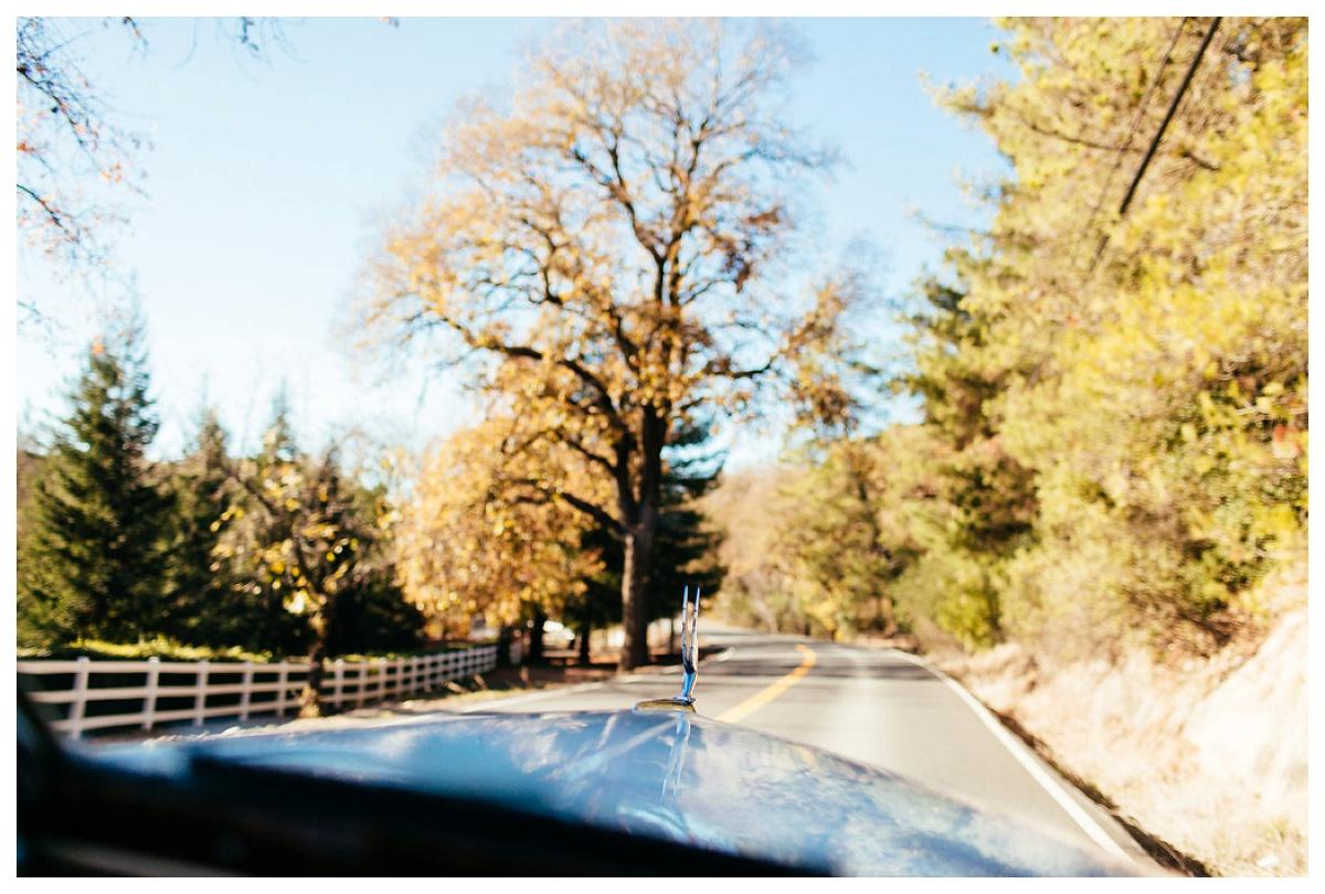 christinakarstphotography_redwoodswedding_houston-91.jpg
