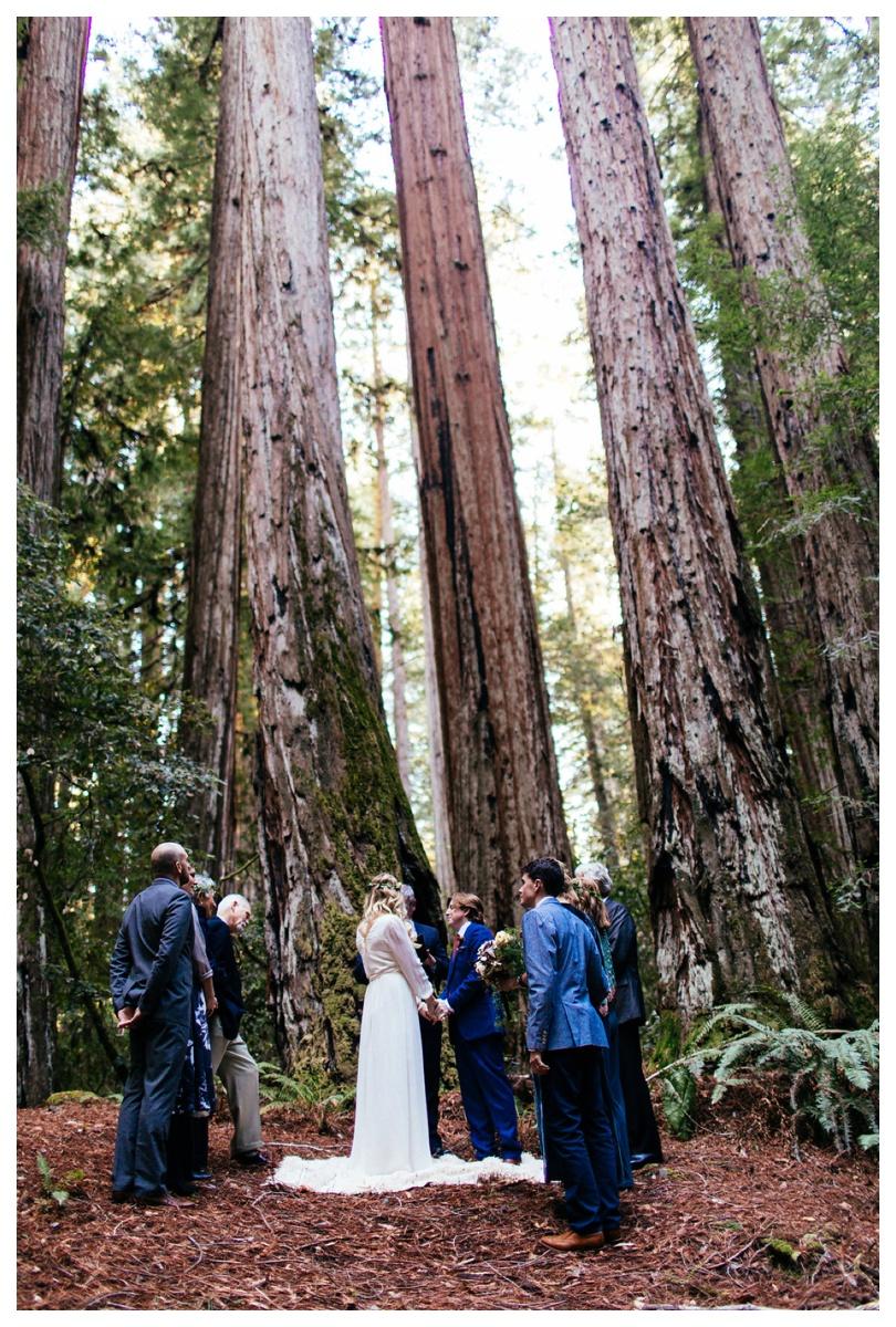 christinakarstphotography_redwoodswedding_houston-129.jpg