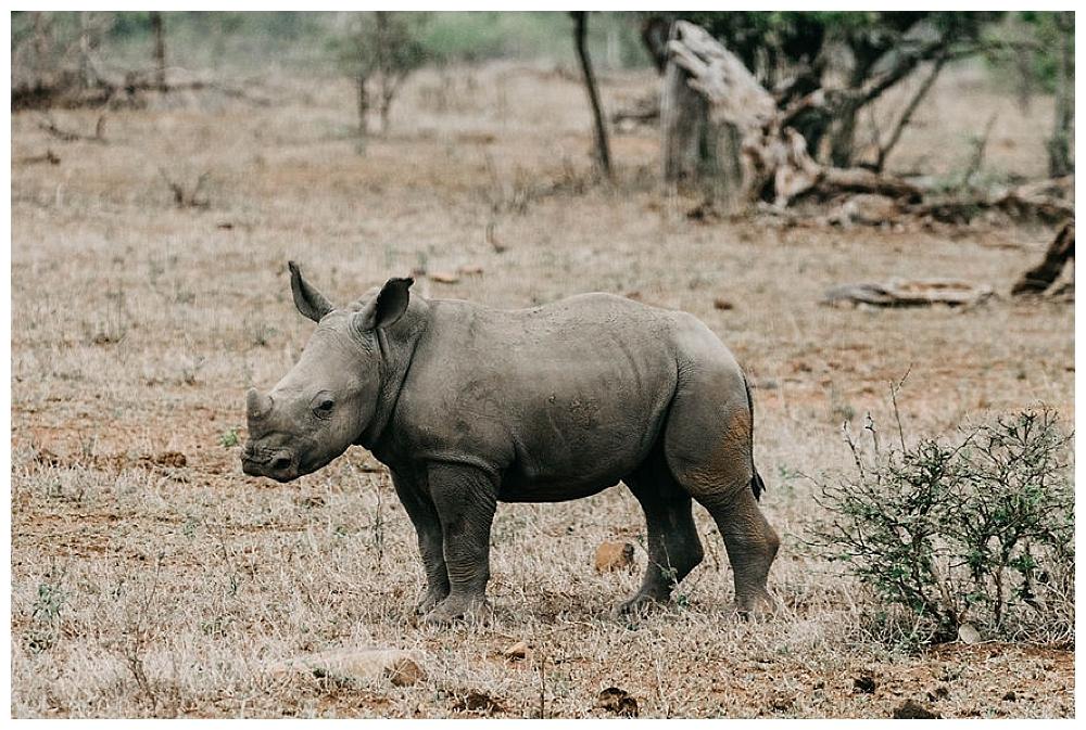 christinakarstphotography_southafricaelopement-53.jpg