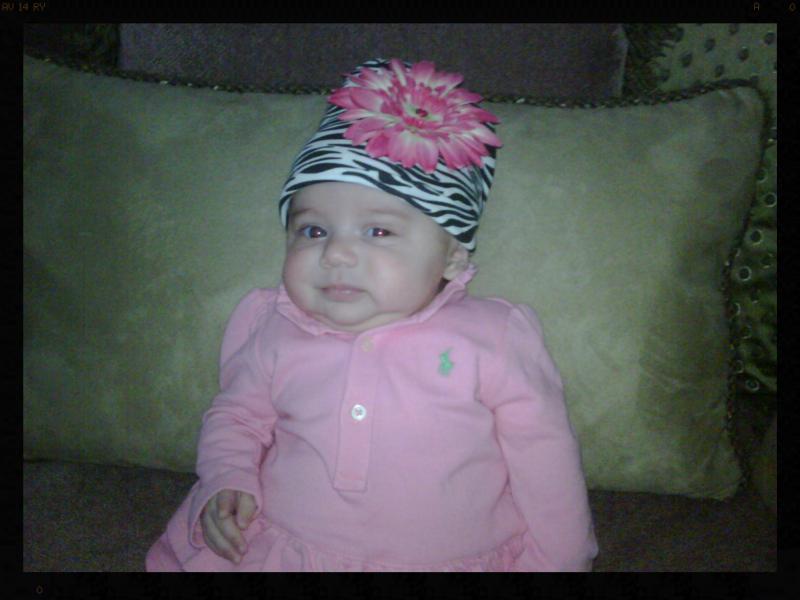 Baby Rose, 2010