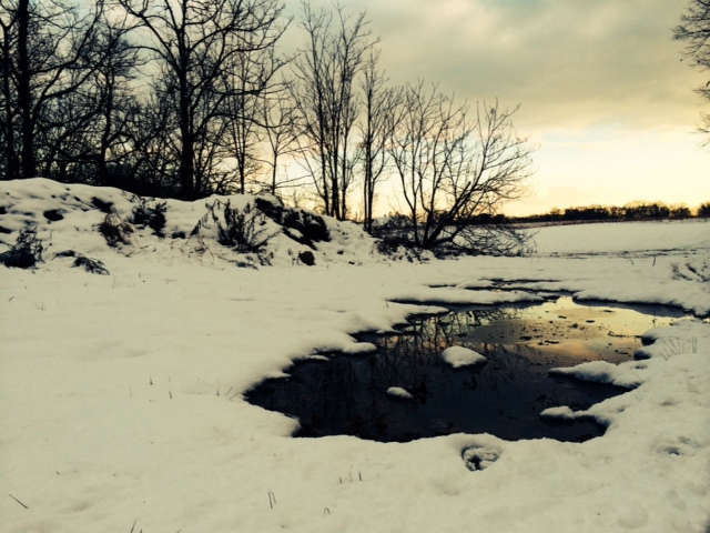Caumsett State Historic Park Preserve photo by new york city feng shui consultant .jpg