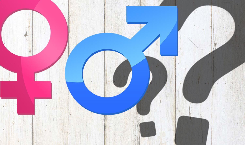 Gender Blogs.jpg