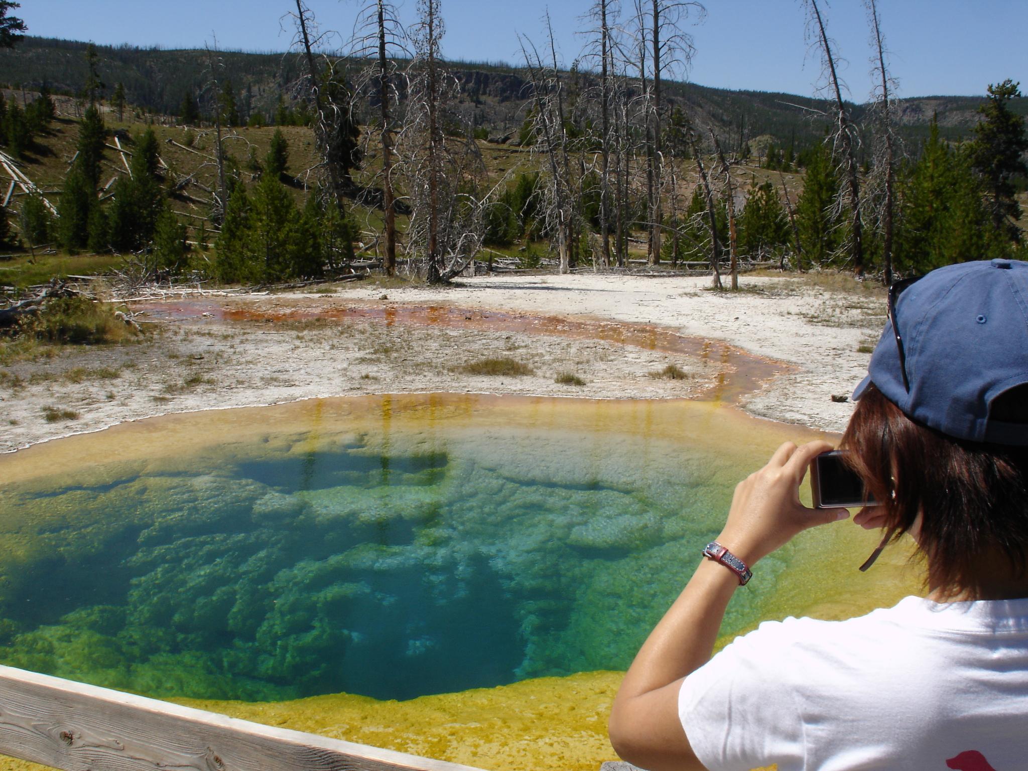 Tourist Scenes Series: Yellowstone ,  Morning Glory Pool ,  postcard set , 2015, 4 x 6 inches