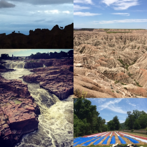 Also, I got to see the country. Clockwise: Badlands National Park, SD in a thunderstorm; Badlands National Park in the sun; Veterans Healing Farm in Hendersonville, NC; Sioux Falls, SD.